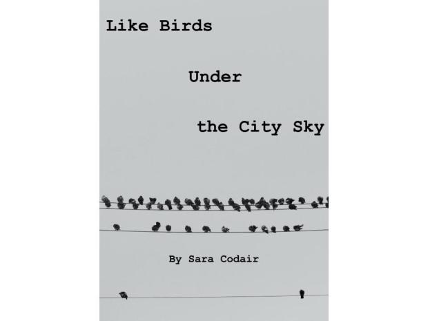 like-birds-under-the-city-sky-cover